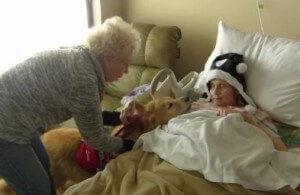Kathy Hogan guides Luca, a pet therapy dog, toward the bedside of a hospice patient.
