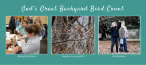 Photos from God's great backyard bird count