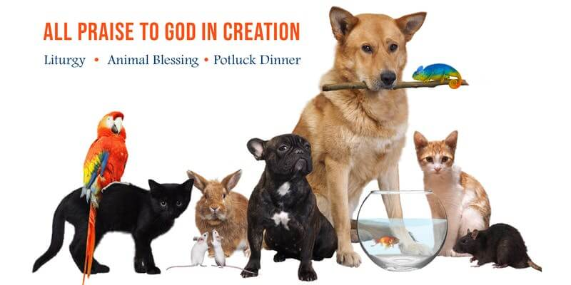 All Praise to God in Creation: Eucharistic Liturgy, Blessing of Animals, and Potluck Dinner @ Sisters of St. Joseph